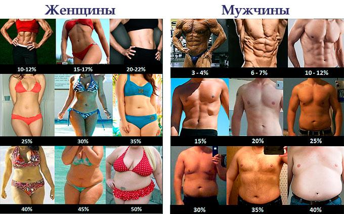 определение процента жира в организме