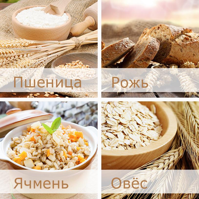 в каких продуктах есть глютен