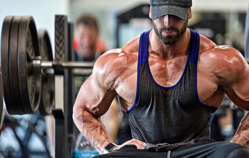 программа тренировок для набора мышечной массы 5х5