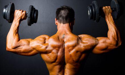 Эффективные упражнения на плечи — базовые и изолирующие