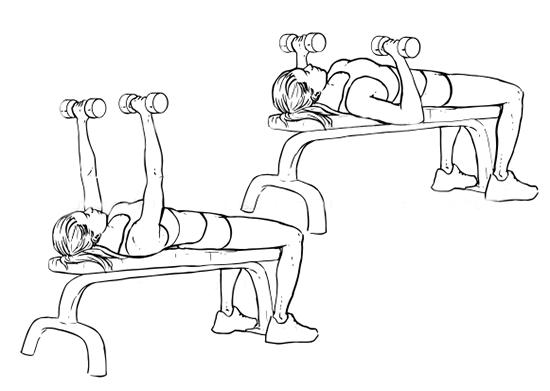 жим гантелей лежа для девушек