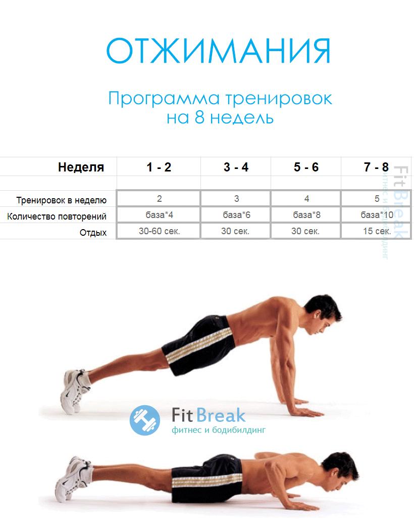 Таблица отжиманий: программа тренировок