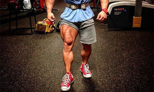 Тренировка мышц ног на массу — базовые и изолирующие упражнения