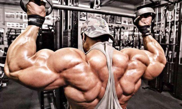 Упражнения для спины: видео-подборка (для мужчин)