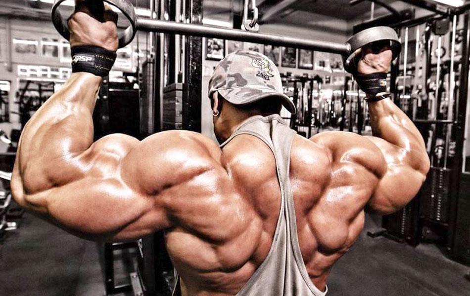 Упражнения для спины видео для мужчин